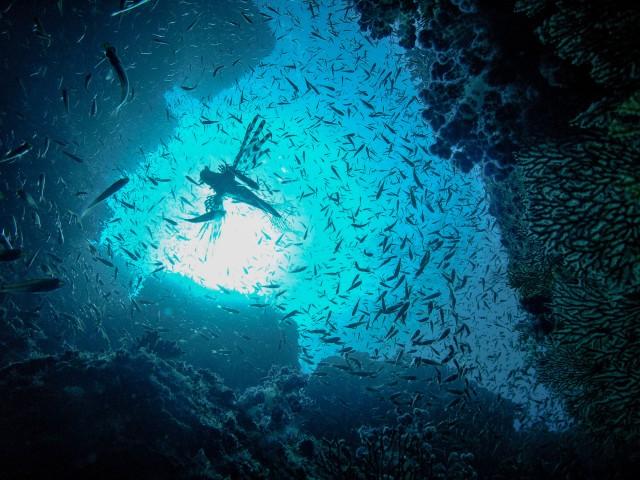 青の洞窟 (4)