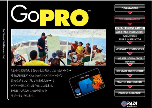GoPRO_1(0226)