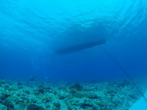 2016-5-8 marine (773) (650x488)